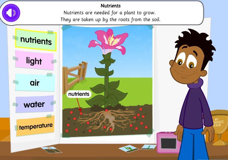 Plants Learn Screen