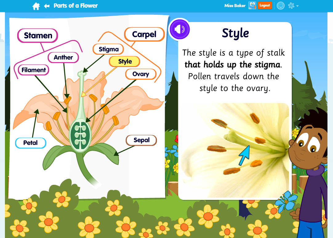 Parts of a Flower Science Learn Screen
